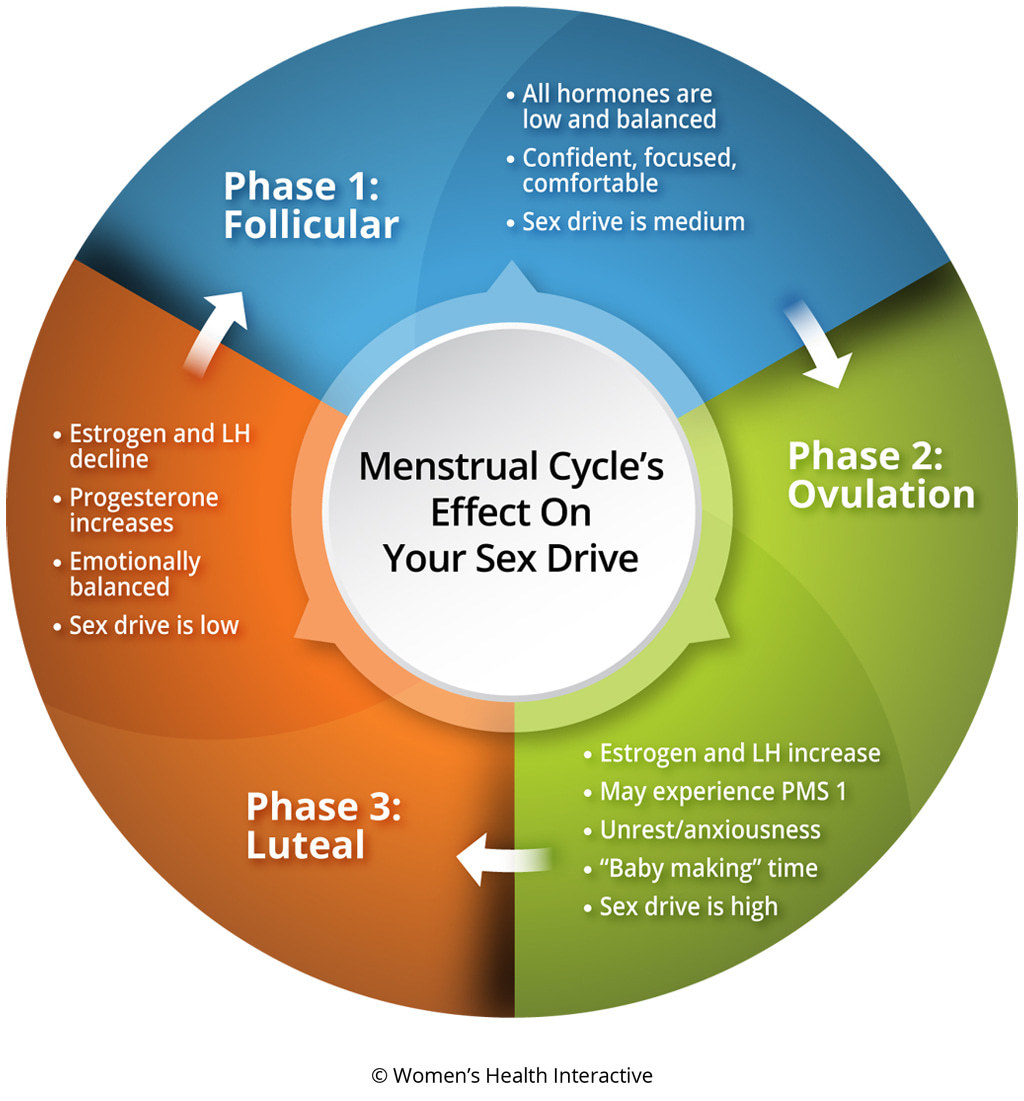 Infographic Showing Female Hormone's Affect on Sex Drive During Menstrual Cycle