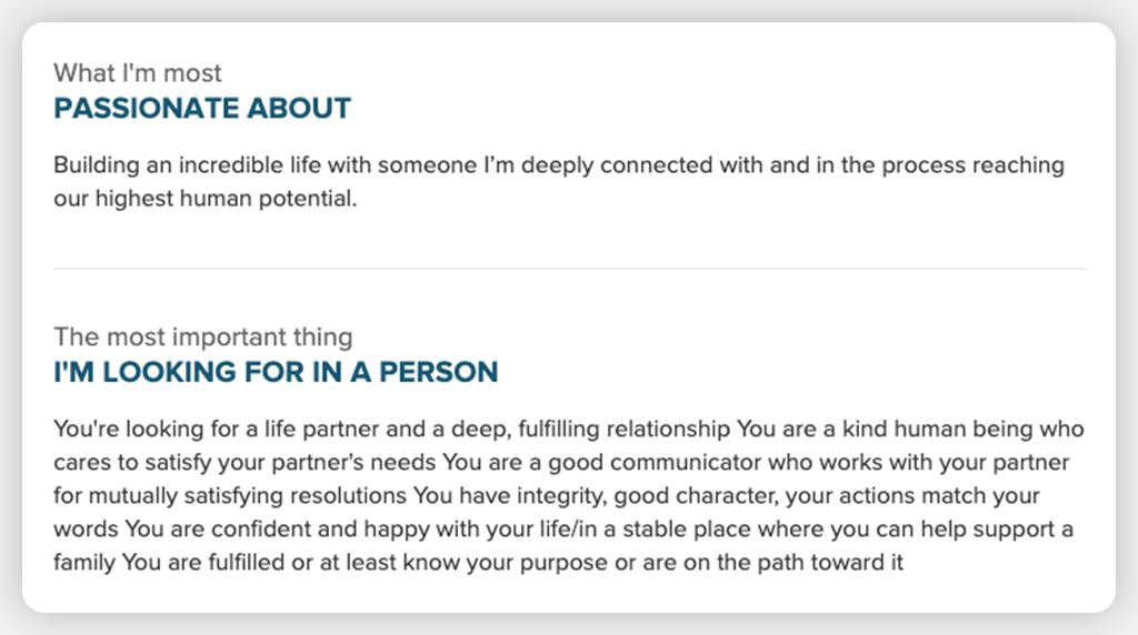 Screenshot Of Online Dating Profile Showing A Great Description Of What The Person Is Looking For