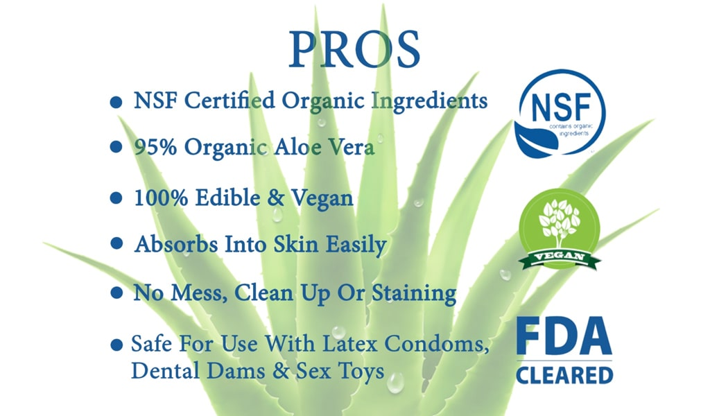 Graphic Listing The Pros Of Aloe Cadabra Personal Lubricant Against Aloe Plant Image