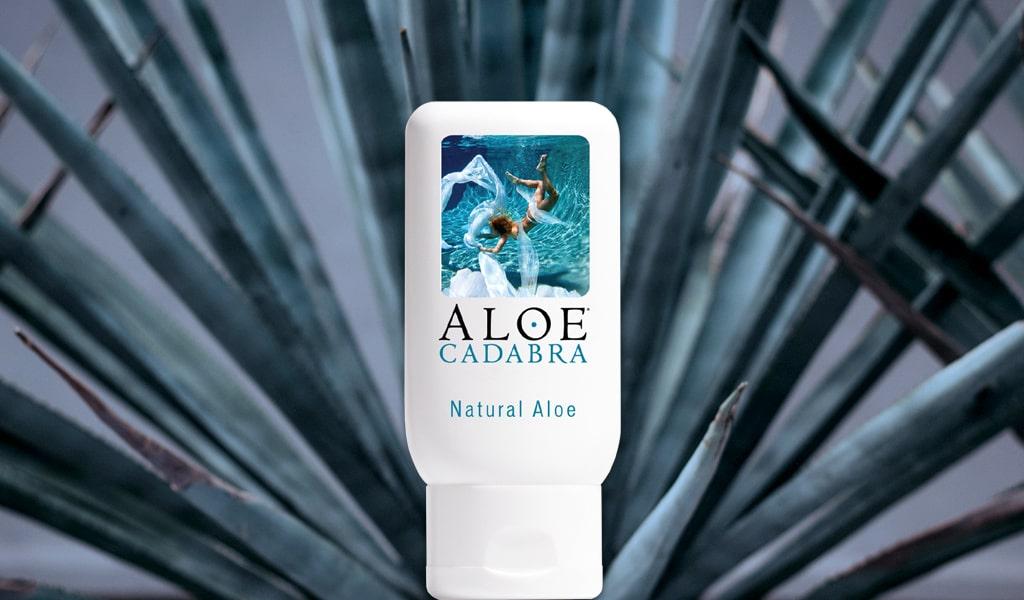 Photograph Of Single Aloe Cadabra Bottle Against Fan-Like Aloe Plant