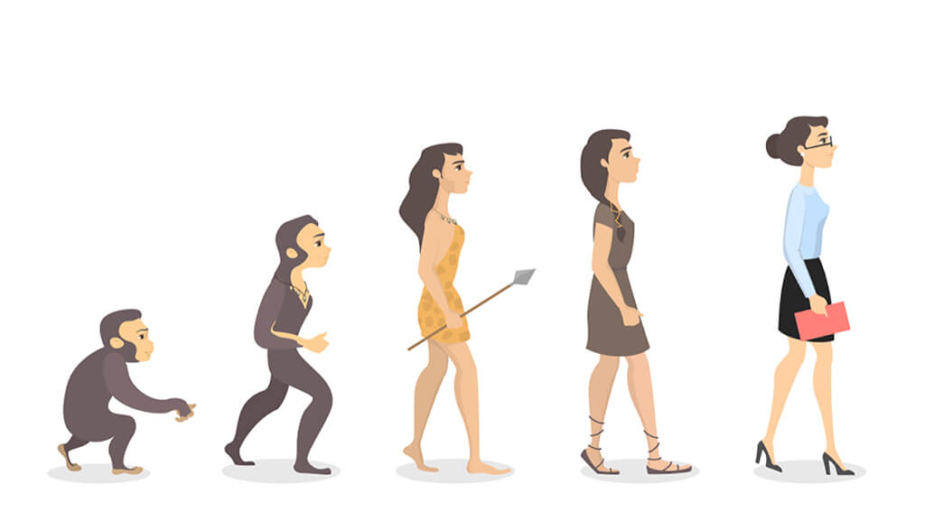 Cartoon Of The Evolution Of A Modern Woman From Chimp To Woman In A Mini Skirt